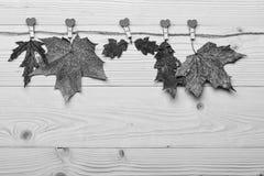 De herfst gevallen die bladeren op streng met uiterst kleine spelden met harten worden gespeld Inzamelingsconcept Esdoorn en eike royalty-vrije stock foto
