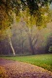 De herfst in Goldsworth-Park in Woking Royalty-vrije Stock Foto's