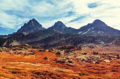 De herfst in Grand Teton Stock Foto