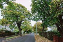 De herfst in Greystones Stock Fotografie