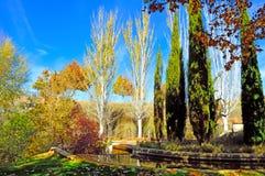 De herfst in Guadalajara Spanje Stock Fotografie
