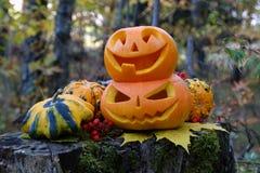 De herfst Halloween Stock Foto's