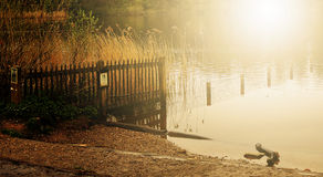 De herfst in Hampstead Londen Engeland het UK Stock Foto's