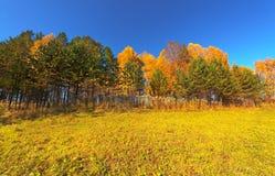 De herfst, HDRI Stock Afbeelding