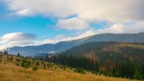 De herfst Het bergbos stock footage