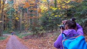 De herfst in het bosa-meisje fotografeert een mooi bos royalty-vrije stock foto's