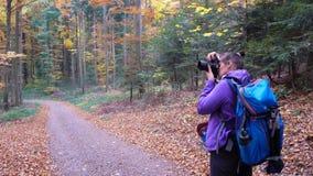 De herfst in het bosa-meisje fotografeert een mooi bos royalty-vrije stock foto