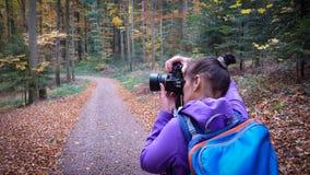 De herfst in het bosa-meisje fotografeert een mooi bos royalty-vrije stock afbeelding