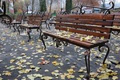 De herfst in het de zomertheater. Royalty-vrije Stock Foto's
