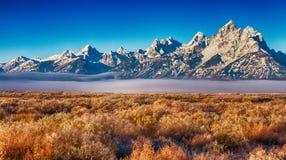 De herfst in het Grote Nationale Park Wyoming van Tetons Royalty-vrije Stock Foto