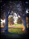 De herfst in het Land Stock Afbeeldingen