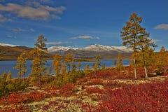 De herfst Het meer van Jack London royalty-vrije stock afbeelding