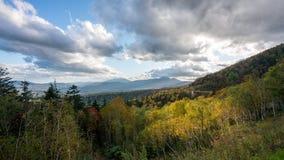 De herfst het meest forrest met licht en berg royalty-vrije stock foto