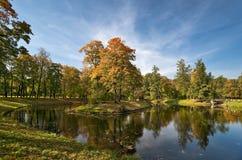 De herfst in het mooie park Royalty-vrije Stock Afbeeldingen