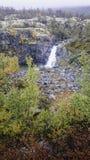 De herfst in het Nationale Park van Dovrefjell, Noorwegen Royalty-vrije Stock Foto