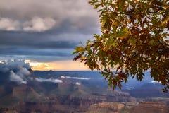 De herfst in het Nationale Park van Grand Canyon, zonsondergang royalty-vrije stock foto