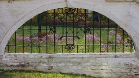 De herfst in het park stock fotografie