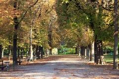De herfst in het Park Luxamburg in Parijs, Frankrijk stock foto