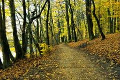 De herfst in het park maksimir in Zagreb Stock Foto