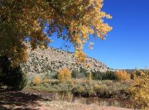 De herfst in het park van de villanuevastaat Royalty-vrije Stock Afbeelding