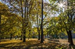 De herfst in het Park van Indro Montanelli Stock Afbeeldingen