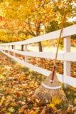 De herfst in het platteland met hark die omhoog tegen witte piketomheining onder esdoornbomen leunen met gevallen bladeren stock afbeelding