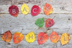 In de herfst het terugkeren naar school Royalty-vrije Stock Foto's