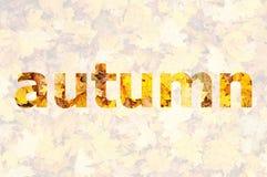 De herfst het van letters voorzien Stock Foto's
