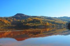 De herfst in het weerspiegelende water Stock Foto's