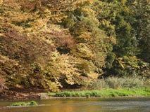 De herfst is hier royalty-vrije stock foto's