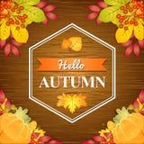 De herfst houten achtergrond Royalty-vrije Stock Foto