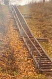 De herfst houten trap met esdoornbladeren en het tegemoetkomende licht van de zon royalty-vrije stock foto's