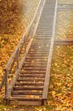 De herfst houten trap met esdoornbladeren en het tegemoetkomende licht van de zon royalty-vrije stock foto