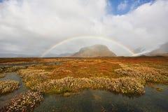 De herfst in IJsland Royalty-vrije Stock Fotografie