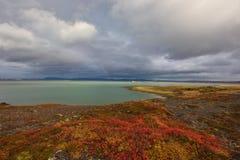 De herfst in IJsland Royalty-vrije Stock Foto