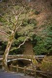 De herfst in Japan Stock Foto