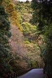 De herfst in Japan Royalty-vrije Stock Afbeeldingen