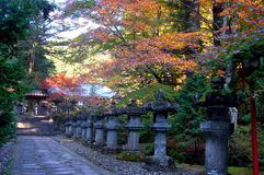 De herfst Japan Stock Afbeelding