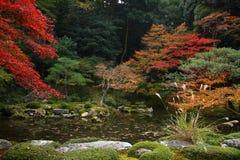 De herfst in Japan Royalty-vrije Stock Foto