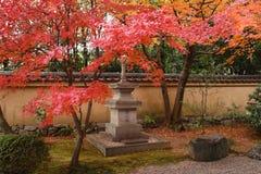 De herfst in Japan Stock Afbeeldingen