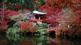 De herfst in de Japanse Tuin stock footage