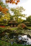 De herfst in Japanse tuin Stock Foto