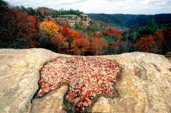De herfst in Kentucky Royalty-vrije Stock Afbeelding