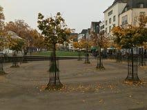 De herfst in Keulen Royalty-vrije Stock Afbeelding