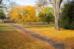 De herfst in Kew-Tuinen, Londen Stock Foto's