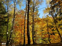 De herfst in de kleurenmeer van Polen stock afbeeldingen