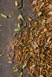 De herfst kleurt bladeren op houten vloer Stock Afbeelding