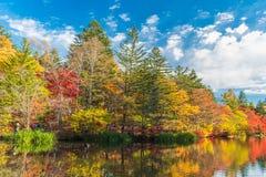 De herfst kleurt vijver royalty-vrije stock foto