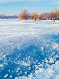 De herfst Koud weer stock fotografie