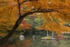 De herfst in Kyoto Stock Afbeeldingen